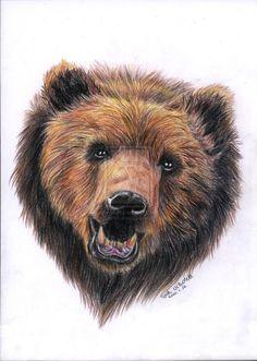 Grizzly bear by CsimmBumm.deviantart.com on @deviantART