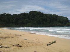 Wizard Beach, Isla Bastimientos