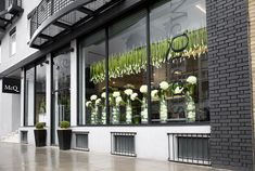 Modern florist - McQueens. Love the hanging flowers and the impact of the window display.