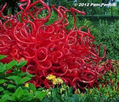 Digging » Chihuly glass exhibit at the Dallas Arboretum