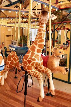 Zoo Carousel | Binder Park Zoo Carousel