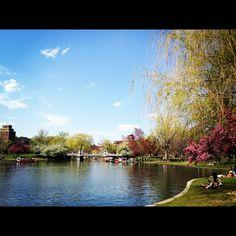Boston Public Garden in April.