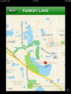 Fish species in healthy florida lakes on pinterest for Healthiest types of fish