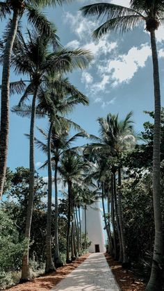 How to Take Good Beach Photos Summer Wallpaper, Nature Wallpaper, Phone Backgrounds, Wallpaper Backgrounds, Fotografie Hacks, Tropical Vibes, Adventure Is Out There, Aesthetic Pictures, Picture Wall