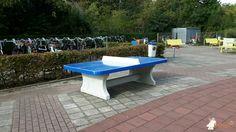 Pingpongtafel Afgerond Blauw bij Melanchthon Schiebroek in Rotterdam