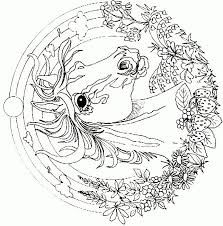 detailed coloring pages for adults - Google Search