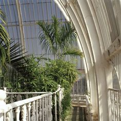 UNESCO World Heritage Sites. The Royal Botanic Gardens at Kew. The Palm House. Plant Aesthetic, Beige Aesthetic, Plants Are Friends, Home Studio, Wall Collage, Matcha, Beautiful Places, Photos, Pictures