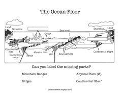 Homeschooling with a Classical Twist: CC Cycle 1, Week 18 Ocean Floor