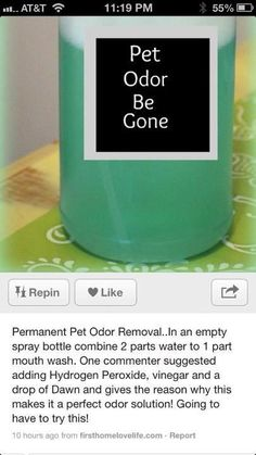 diy pet deodorizer-have not tried this personally, but worth a shot