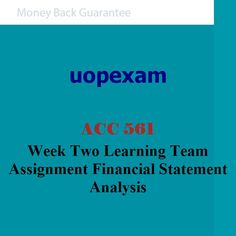 ACC 561 Week Two Learning Team Assignment Financial Statement Analysis
