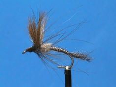 Light Hendrickson Emerger - A cripple or emerger is the most vulnerable to trout.   - fly fishing video channel