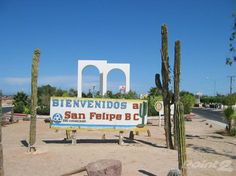 Springtime in San Felipe is a good time to look at & purchase Real Estate in San Felipe. View some offerings from Jim Moore of San Felipe Village Realty at, http://pinterest.com/mexicohomesales/san-felipe-mexico/