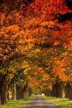 Edinburgh,Virginia in the Picturesque Shenandoah Valley