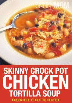 Skinny Crock Pot Chicken Tortilla Soup - This will be super cheap with cooked beans instead of canned beans and my homemade taco seasoning.