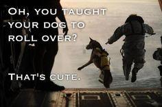 Good dog. #military