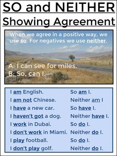 SO and NEITHER - Showing Agreement (Present)