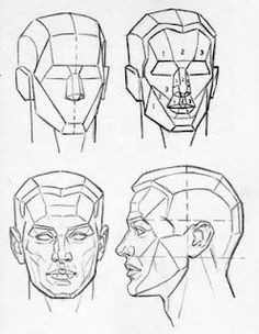 drawing the human head Anatomy Sketches, Anatomy Drawing, Anatomy Art, Drawing Sketches, Drawing Tips, Pencil Sketching, Drawing Drawing, Pencil Art, Pencil Drawings