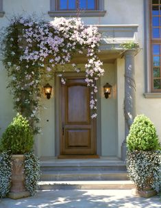 The clematis and the urns make this front entry a gracious focal point. The drape of the clematis over one side adds the contrast that keeps this from being too balanced and predictable. Clematis Montana Rubens, Front Door Entrance, Front Entrances, Front Entry, Front Porch, Door Entry, Modern Front Door, Front Door Design, Entrance Design