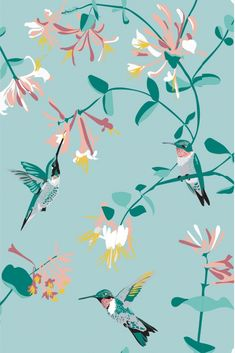 Gorgeous mint, teal and coral hummingbird print wallpaper. Perfect for brightening up a room this year or creating a feature wall. The gorgeous spring colours will add vibrancy to your home and provide lots of options for accessorising. Hummingbird Wallpaper, Butterfly Wallpaper, Mint Green Wallpaper Iphone, Teal Room Decor, Coral Design, Bird Theme, Fabric Birds, Background Pictures, Bird Design