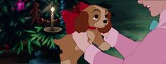 Lady as a puppy (Lady and the Tramp)