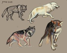 wolf japanese - Google Search