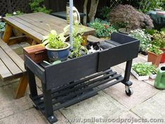 Pallet Plant Stand on Wheels Pallet Crates, Wooden Pallets, Pallet Wood, Diy Wood, Elevated Bed, Diy Plant Stand, Plant Stands, Pallet Furniture Plans, Wooden Pallet Projects