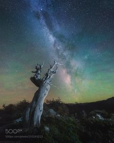 """Untitled - That's awesome and quite rare phenomenon we witnessed in Patagonia this April. It's called atmosphere glow. It's not """"Aurora"""" but very similar - faint glow of atmosphere with green and red colors. The dark sky is very colorful! Danielkordan.com"""