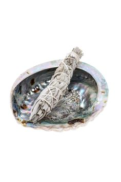 """The abalone shell provides a vessel for burning sage to rid negative energies & evoke soft scents of earth throughout a home.    Approx.Measures: 4.5""""x 3.5"""" shell. 4"""" x 1"""" sage.   Abolone Shell And Sage by Ró  . Home & Gifts - Home Decor - Decorative Objects Home & Gifts - Home Decor - Candles & Scents Buffalo, New York"""