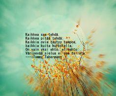 tommy taberman - Google Search