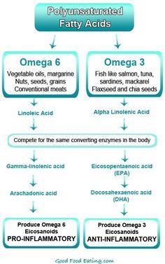 Omega 6 vs Omega 3 Fatty Acids