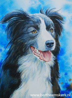 Image result for how to paint a border collie