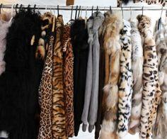 Cruella DeVil's Closet
