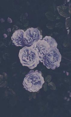 Imagem através do We Heart It #background #flowers #grunge #indie
