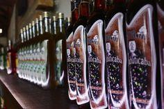 A Cachaçaria Vale das Águas Quentes também produz licores saborosos e exóticos, com sabores do Cerrado, como pequi, jenipapo, jabuticaba, ervas, banana, anis e frutas vermelhas. Caldas Novas, Goiás, Brasil.  Fotografia: Eduardo Andreassi.