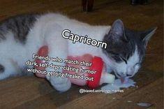 Capricorn Facts, Capricorn Quotes, Zodiac Signs Capricorn, Cancer Quotes, Capricorn And Aquarius, Zodiac Star Signs, My Zodiac Sign, Astrology Signs, Le Zodiac