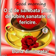 Good Morning, Photos, Buen Dia, Bonjour, Bom Dia