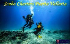 Scuba Charters Puerto Vallarta