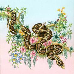 Ilustração de Rosiland Solomon.