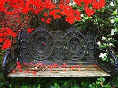 Beautiful firery blooming azeleas with a southern bench.