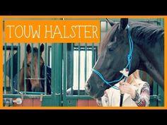 Touwhalster knopen en pimpen | PaardenpraatTV - YouTube
