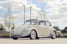 Beetle | by Olllie Alllen
