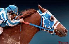 One of my favorite pic's of Secretariat.