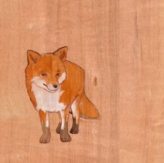fox (: