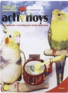 JW Pet Company Activitoys Drum Bird Toy by JW Pet, http://www.amazon.com/dp/B002GJSH3A/ref=cm_sw_r_pi_dp_gZR8rb0087V7E