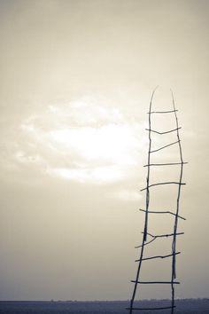 'sky ladders' in progress - Tim Johnson