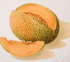 Cantaloupe print via Etsy