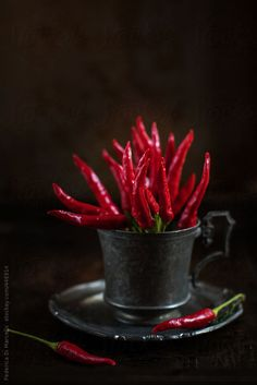 Red hot chili peppers bouquet in a pewter cup on a dark background