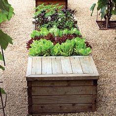 awesome garden box