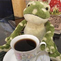 Cute Stuffed Animals, Cute Animals, Frog And Toad, Frog Frog, Frog Pictures, Green Frog, Cute Frogs, Cute Plush, Amphibians