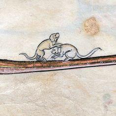 dogs playing Le livre de Lancelot du Lac and other Arthurian Romances, Northern France 13th century Beinecke Rare Book & Manuscript Library, MS 229, fol. 267r